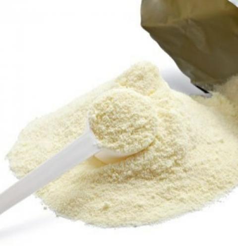 Argentina: ¿Cuánto cobraría un productor si toda su leche se exportara como polvo?