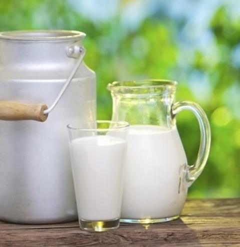 Governador Ratinho Junior reforça necessidade de agregar tecnologia à produção do leite