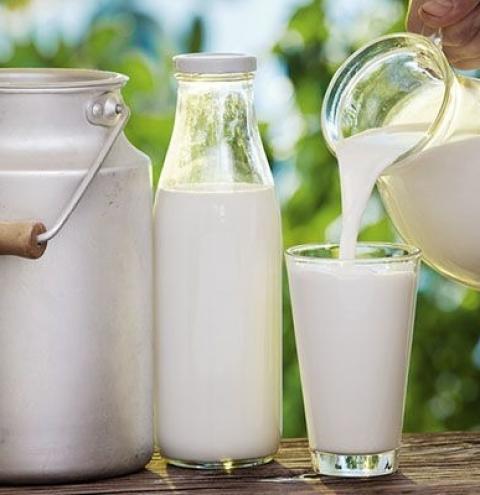 Preços do leite voltam a se enfraquecer em outubro, diz Cepea