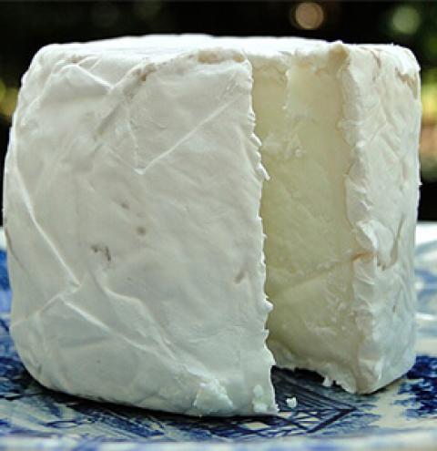 Queijos com leite de cabra